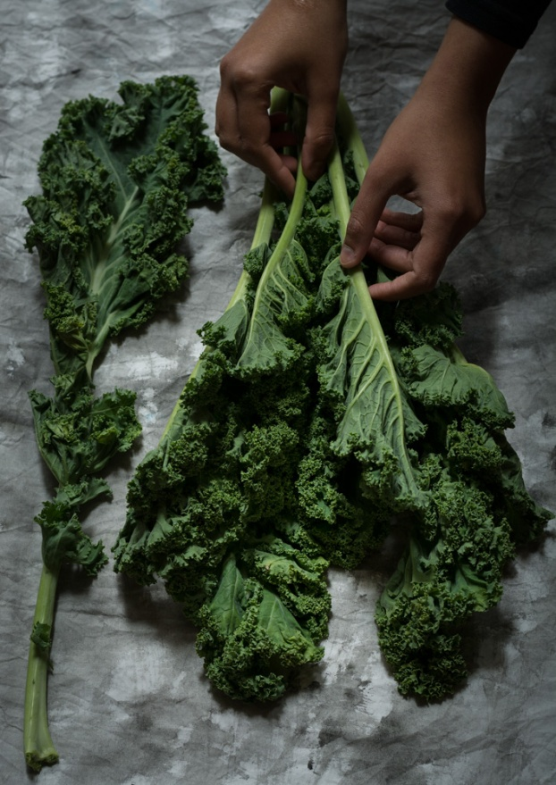 curly kale-2